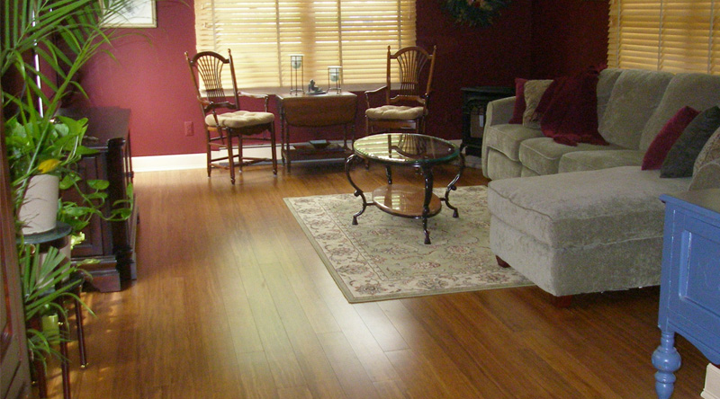 Advantages of Bamboo Flooring