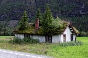 green roof on small house