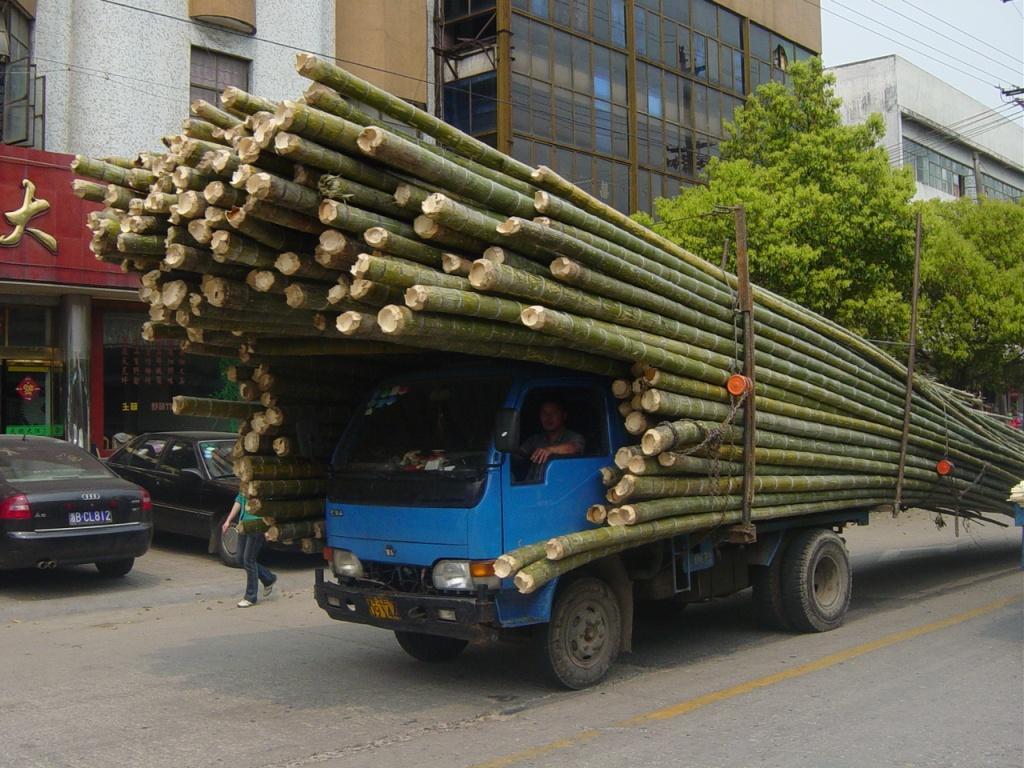bamboo-sell-yard