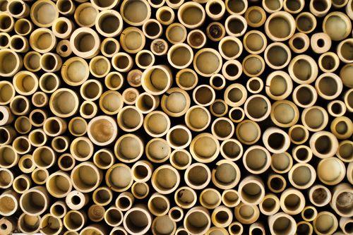 a stack circle of bamboo cuts
