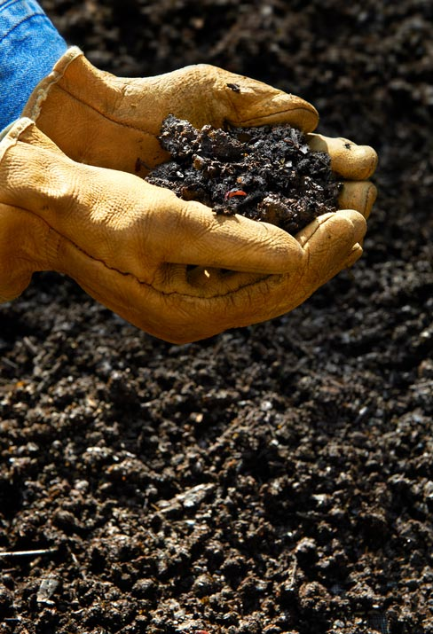 How to Compost Your Kitchen Trash into Rich Gardening Soil