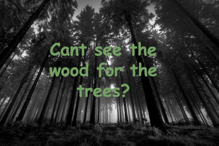 Cant see the wood for the trees