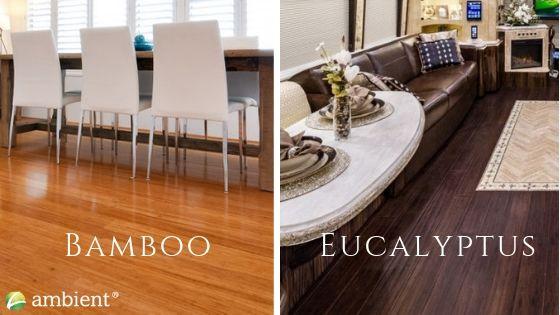 bamboo-and-eucalyptus-flooring-options