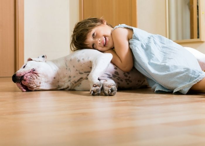 Kid-Friendly, Pet-Approved LVP Rigid Core Flooring