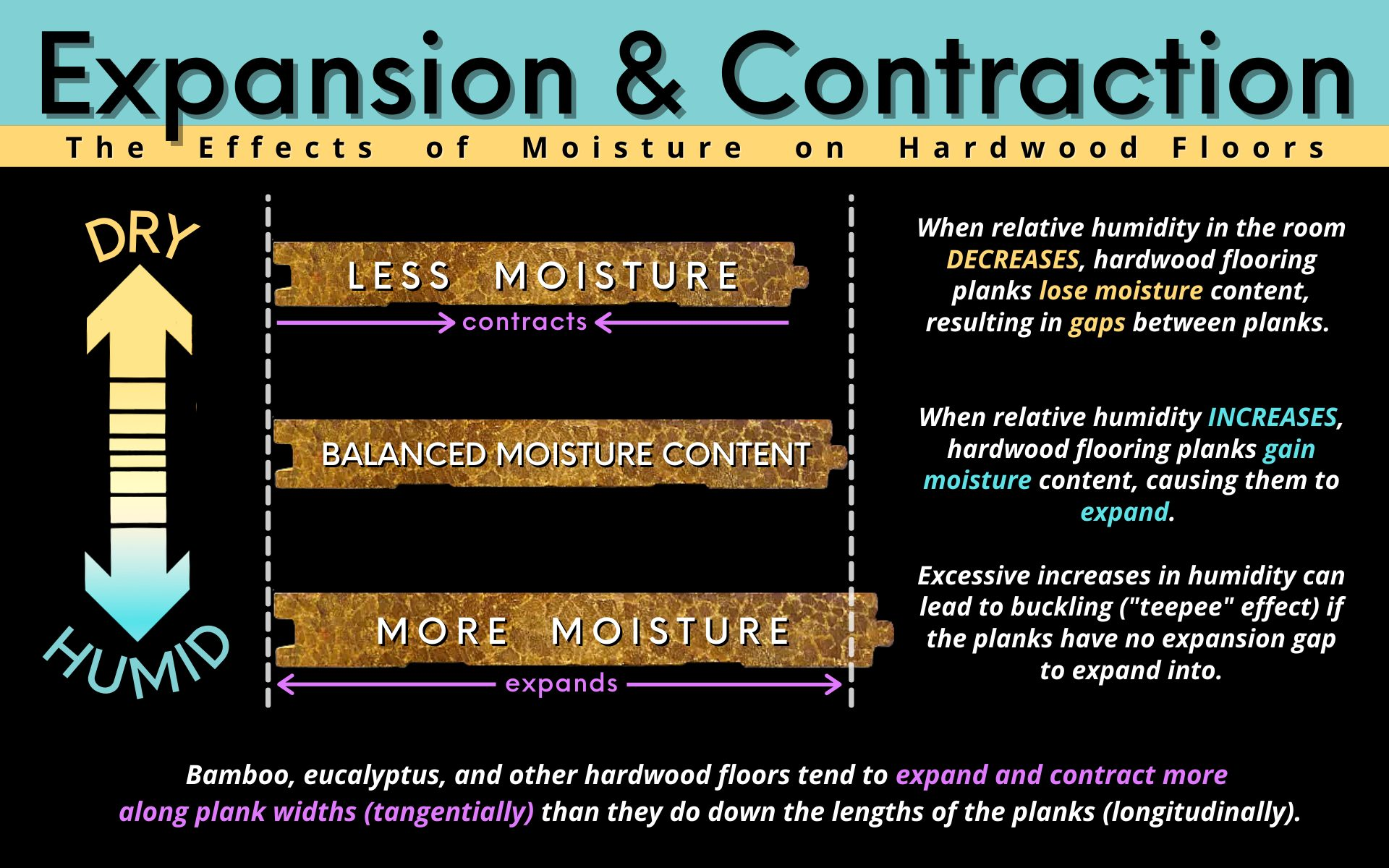 Expansion and Contraction Infographic