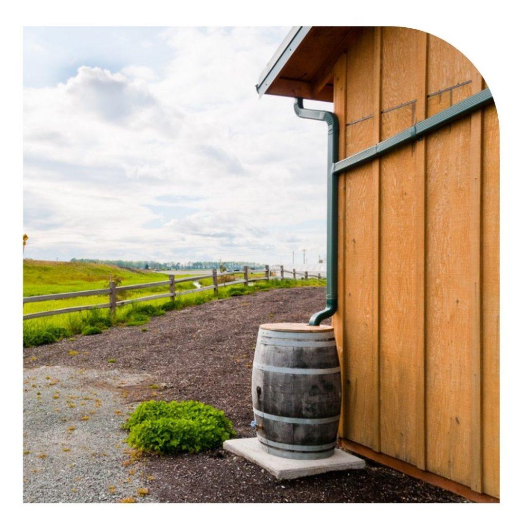 rainwater-collection-bin