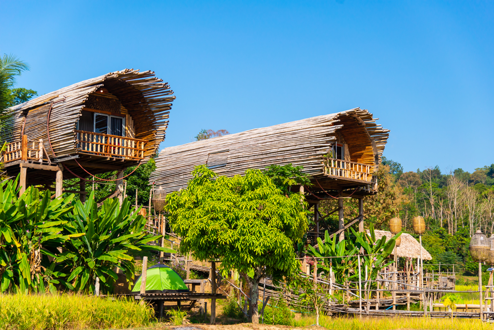 bamboo-home-building