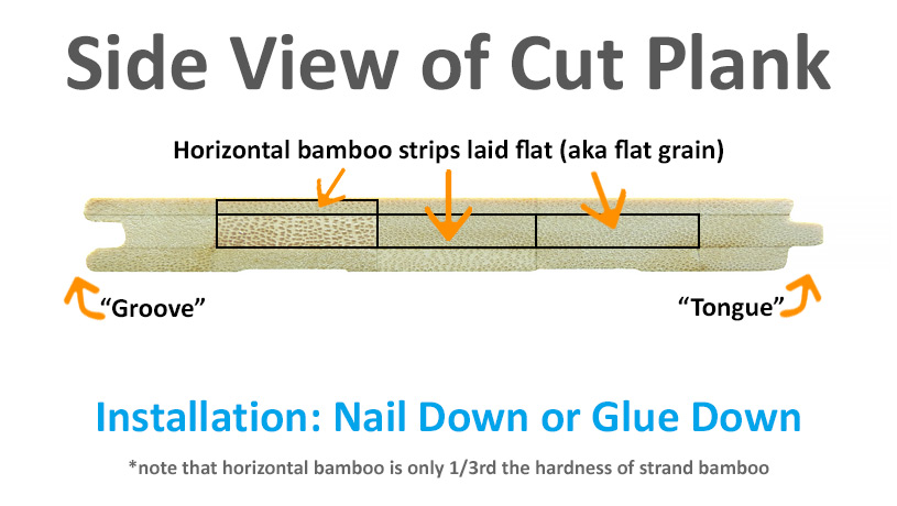 N H  Side Plank Diagram