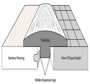Bamboo Tmolding Transition Diagram