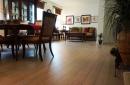 Artisan Sahara Bamboo Flooring